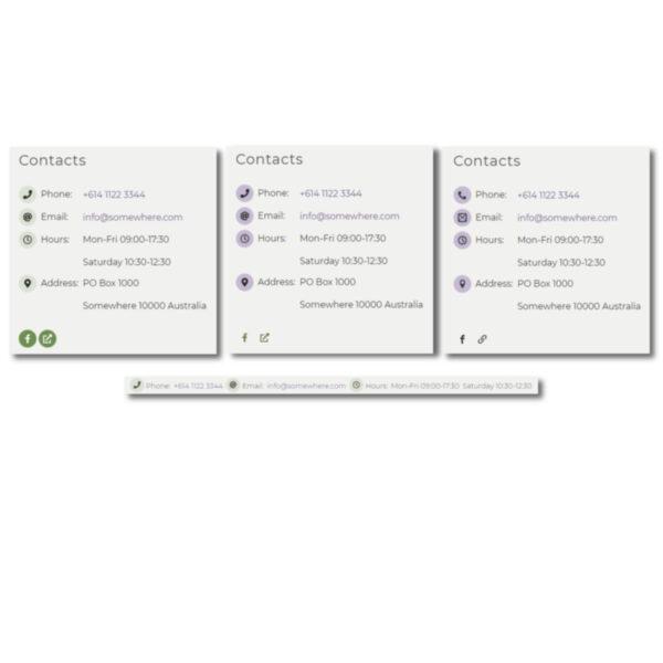 DFU Company Info with SEO plugin - Company info vertical horizontal and social widget